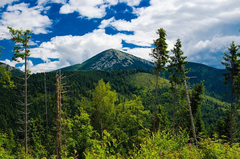 фото похід на гору Хомяк - AtomTravel